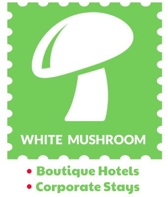white-mushrooms-holidays